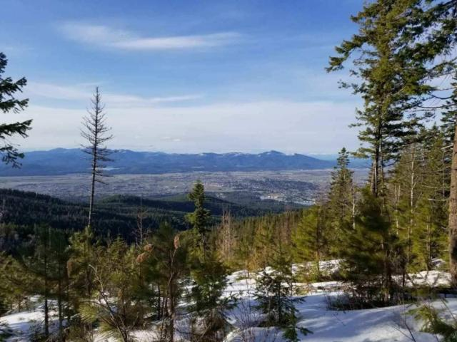 NKA S Blossom Mountain, Post Falls, ID 83854 (#18-3863) :: The Stan Groves Real Estate Group