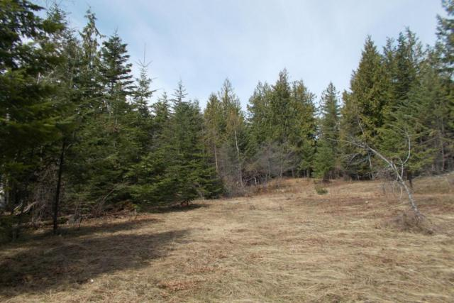 6.3 ac Sunset View Lane, Hope, ID 83836 (#18-3911) :: Link Properties Group