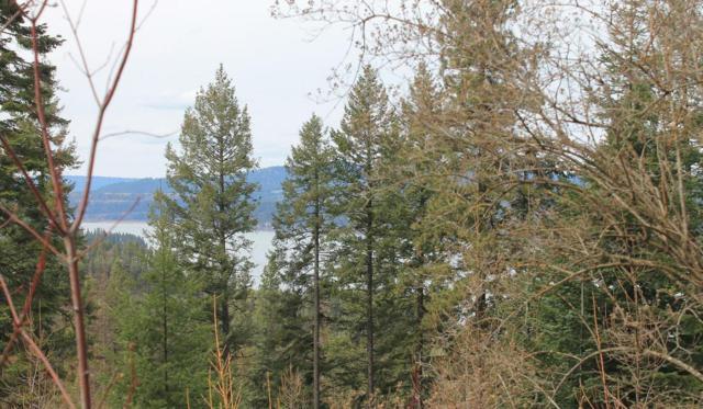 NNA High Side Dr, Worley, ID 83876 (#18-4248) :: The Spokane Home Guy Group