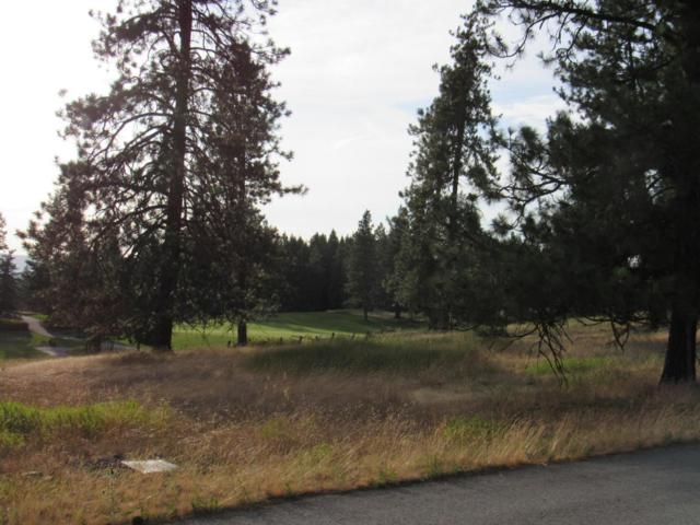 6275 S Old Barn Rd, Harrison, ID 83833 (#18-4352) :: The Spokane Home Guy Group
