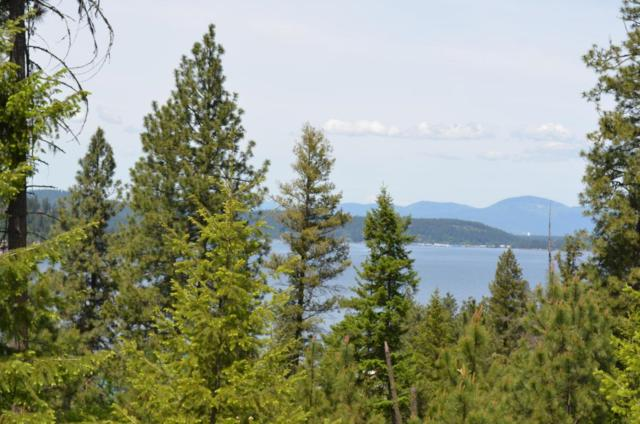 lot 7 Mariposa Ct, Harrison, ID 83833 (#18-4485) :: The Spokane Home Guy Group