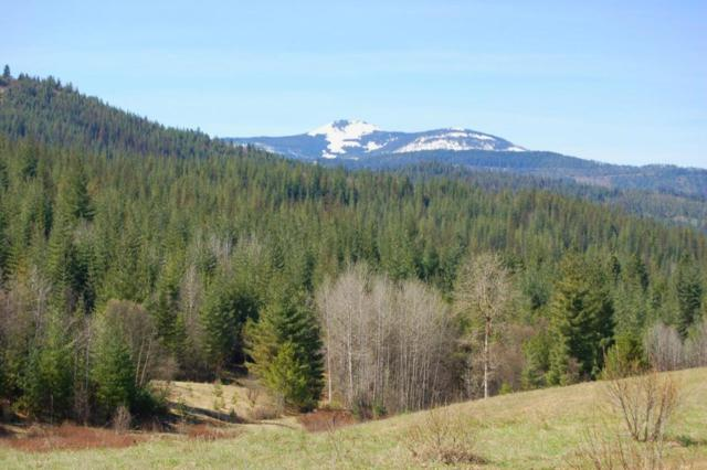 100 Trail Blazer Ct, Pinehurst, ID 83850 (#18-5022) :: The Spokane Home Guy Group