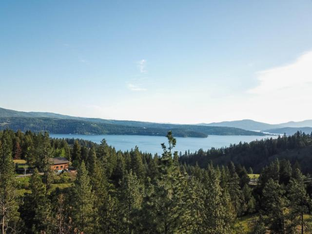 NKA S. Tumble Creek (Post 13) Rd, Coeur d'Alene, ID 83814 (#18-5188) :: Team Brown Realty