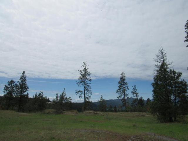 Lot 1 S Gozzer Rd, Harrison, ID 83833 (#18-5384) :: The Spokane Home Guy Group