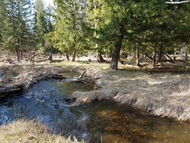 NNA Highway 95, Bonners Ferry, ID 83805 (#18-5422) :: Team Brown Realty