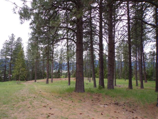 Nna Tannenbaum Circle, Bonners Ferry, ID 83805 (#18-5435) :: Team Brown Realty