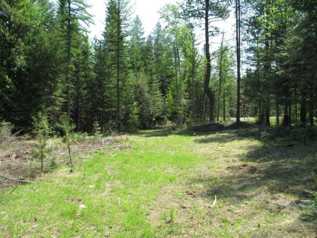 1 Justice Ct, Sandpoint, ID 83864 (#18-5558) :: Prime Real Estate Group