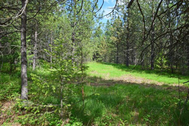 Lot 20 Pinnacle Circle, Bonners Ferry, ID 83805 (#18-5665) :: Team Brown Realty
