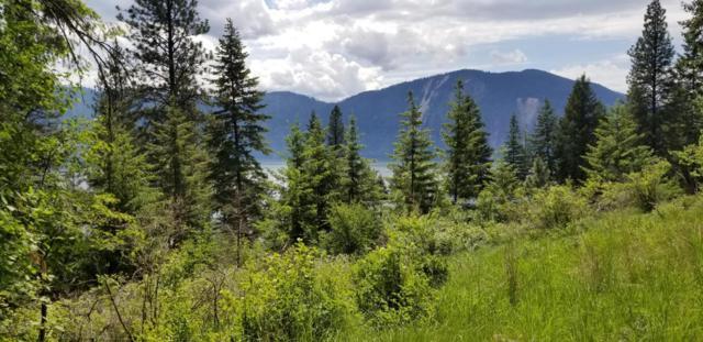 NKA Glacier Loop, Bayview, ID 83803 (#18-5732) :: Keller Williams Realty Coeur d' Alene