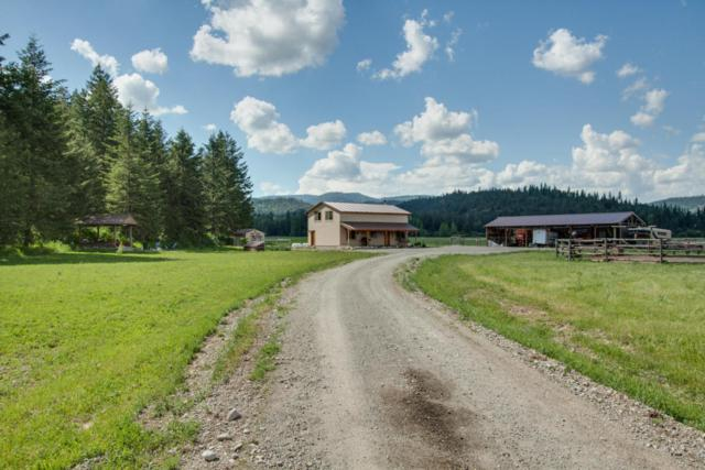 65 Polonium Way, Priest River, ID 83856 (#18-5749) :: Northwest Professional Real Estate