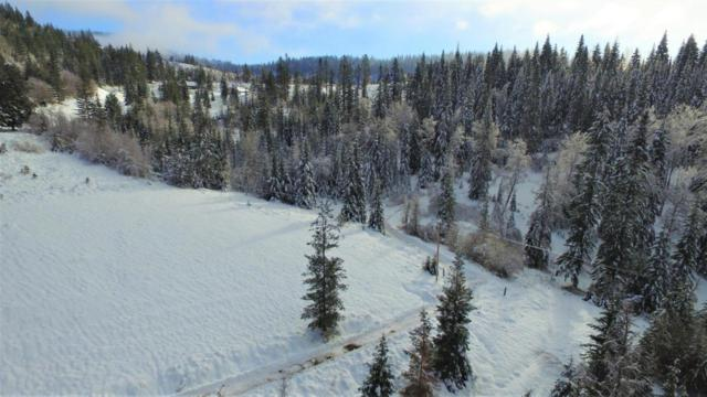 NNA Derting Rd, Hayden, ID 83835 (#18-585) :: The Jason Walker Team