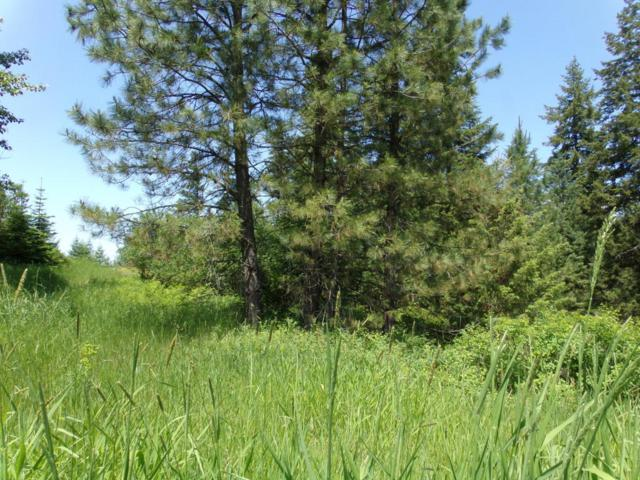 Lot 1 Rimrock, St. Maries, ID 83861 (#18-6244) :: The Stan Groves Real Estate Group