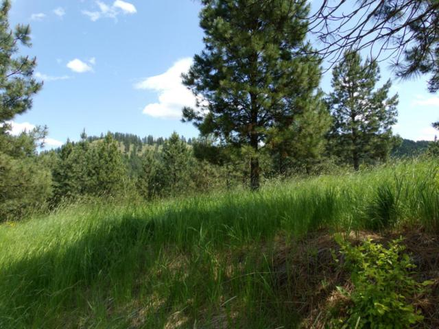 Blk 2 Lot 14 Rimrock Drive, St. Maries, ID 83861 (#18-6247) :: The Stan Groves Real Estate Group