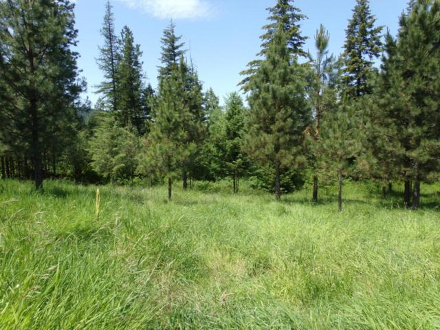 Lot 6 Rimrock Drive, St. Maries, ID 83861 (#18-6252) :: The Stan Groves Real Estate Group
