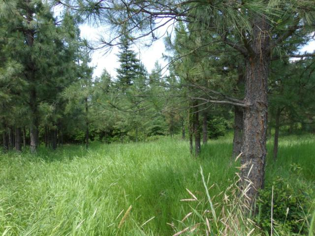 Lot 7 Rimrock Drive, St. Maries, ID 83861 (#18-6254) :: The Stan Groves Real Estate Group