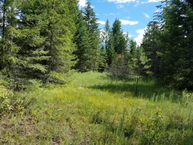 Blk 1 Lot 3A Barn Owl Ln, Spirit Lake, ID 83869 (#18-6518) :: The Spokane Home Guy Group