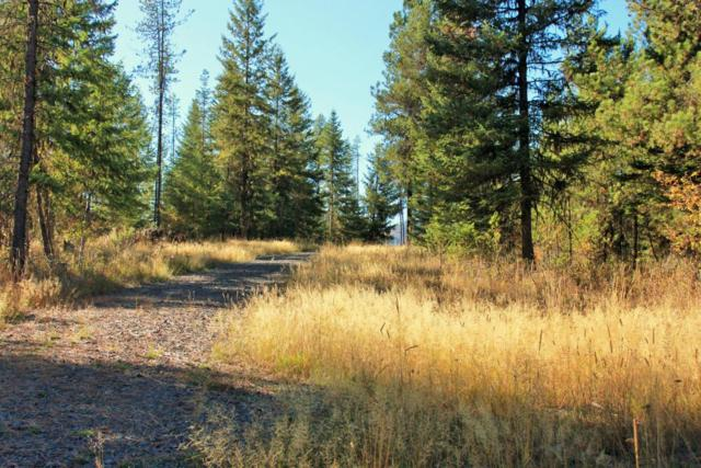 Lot 30 Woodland Ave, St. Maries, ID 83861 (#18-709) :: The Spokane Home Guy Group