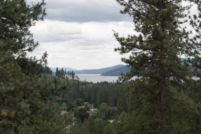 LT 10 E Fernan Hill Rd, Coeur d'Alene, ID 83814 (#18-7159) :: Groves Realty Group
