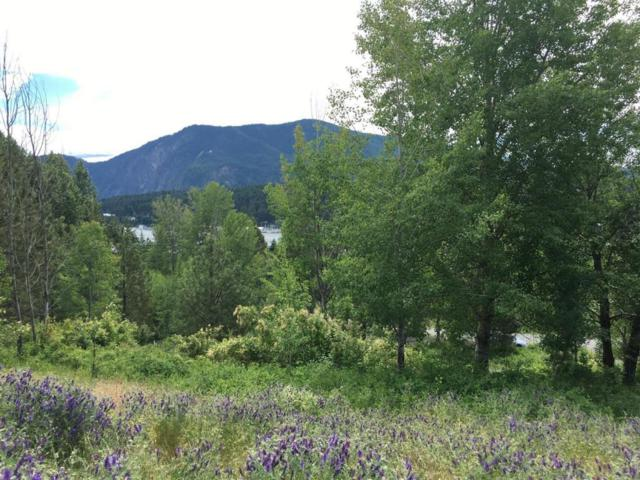 NNA Waller Rd. Lot 5 Blk 1, Bayview, ID 83803 (#18-7401) :: Prime Real Estate Group