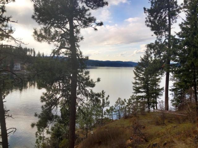 Lot 5A Hats Lane, Harrison, ID 83833 (#18-7416) :: Prime Real Estate Group