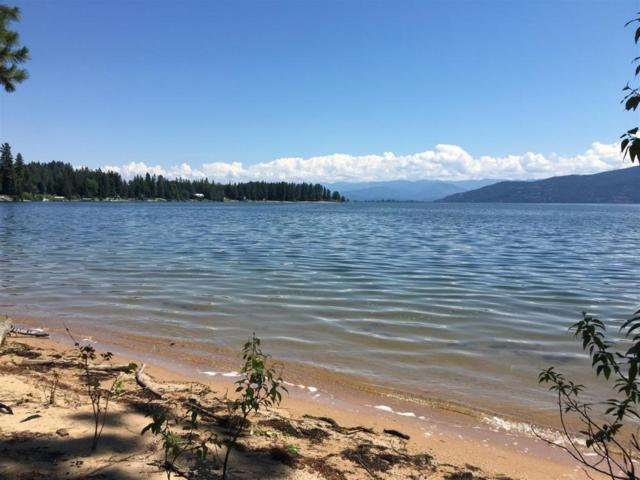 309 Lakeshore Ave., Dover, ID 83825 (#18-7481) :: Prime Real Estate Group