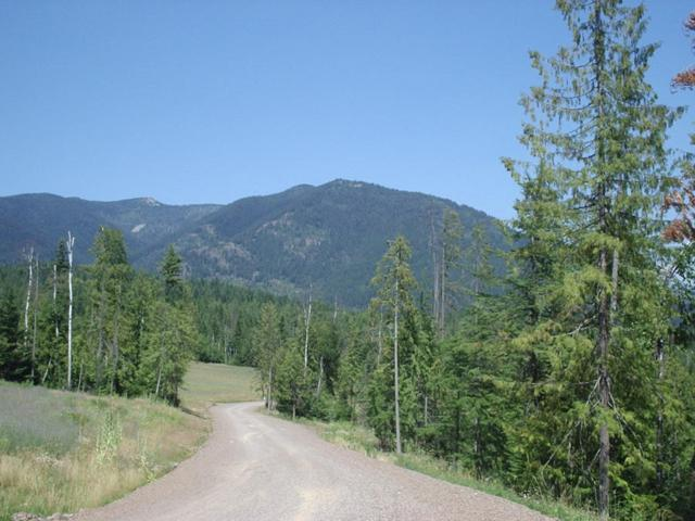 Lot 8 Sled Run Trl, Clark Fork, ID 83811 (#18-7727) :: Team Brown Realty