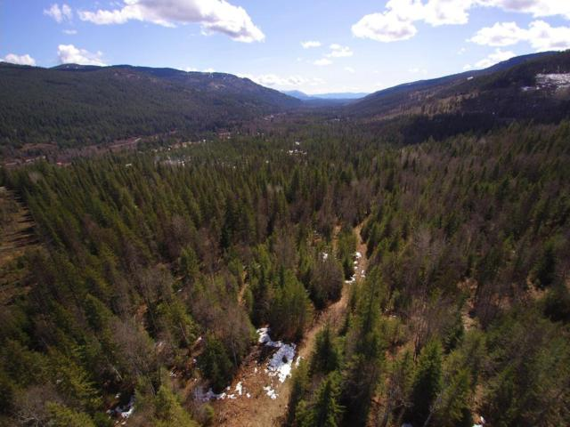 NKA Hell Roaring Rd, Sandpoint, ID 83864 (#18-8049) :: Link Properties Group