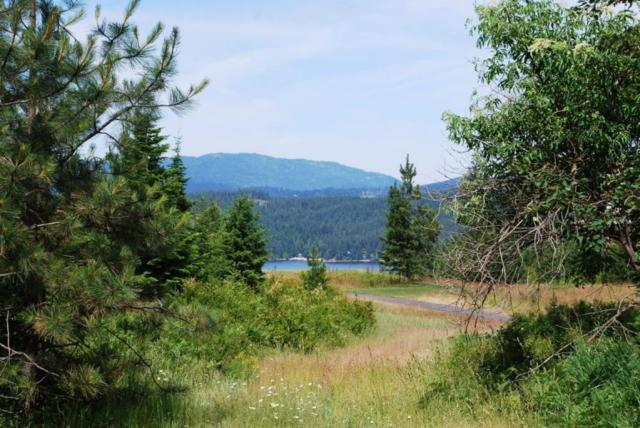 8446 S Buckrail Rd, Harrison, ID 83833 (#18-8361) :: The Stan Groves Real Estate Group