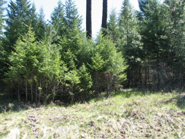 Lot 93 Buckrail Road, Harrison, ID 83833 (#18-8362) :: The Stan Groves Real Estate Group