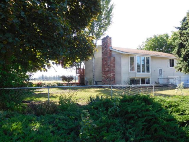 1920 N Havichur Loop, Post Falls, ID 83854 (#18-8367) :: Link Properties Group