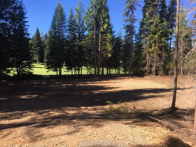 NNA Fairway Dr, Priest Lake, ID 83856 (#18-8371) :: Link Properties Group
