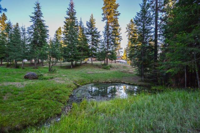 NKA Ridgeview Loop, Harrison, ID 83833 (#18-8378) :: The Spokane Home Guy Group