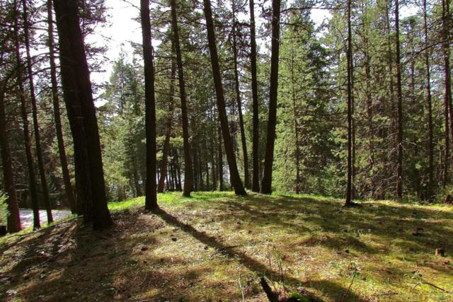 Lot 17 BL Hanaford Rd, Blanchard, ID 83804 (#18-8434) :: Northwest Professional Real Estate