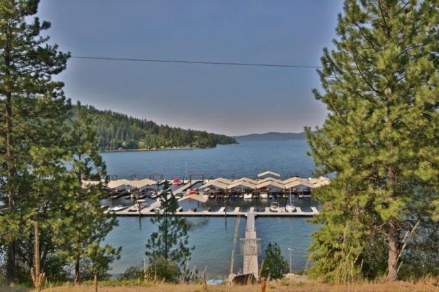 13675 S Edgewater Dr, Harrison, ID 83833 (#18-8817) :: Prime Real Estate Group