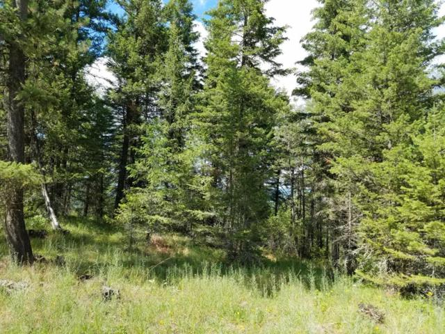 nna Blk 1 Lot 3 Goldfinch Ln, Spirit Lake, ID 83869 (#18-917) :: Chad Salsbury Group