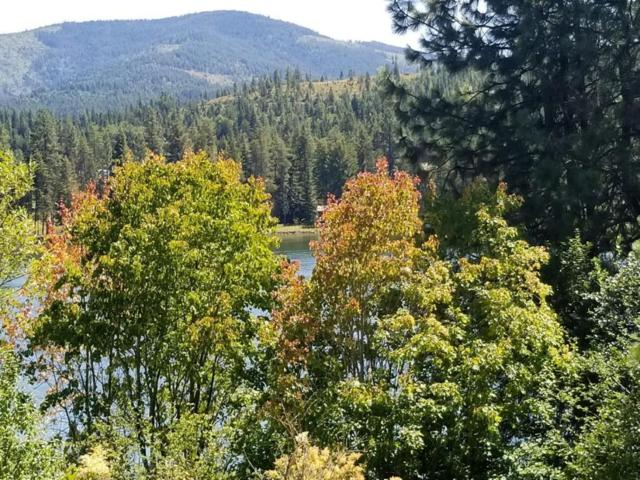 0 Highway 2, Priest River, ID 83856 (#18-9189) :: Northwest Professional Real Estate
