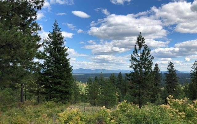 NNA Hidden Valley Road, Spirit Lake, ID 83869 (#18-9318) :: Northwest Professional Real Estate