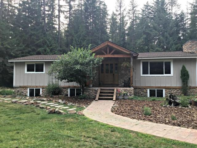 527 Creekside Dr, Priest Lake, ID 83856 (#18-9330) :: Northwest Professional Real Estate