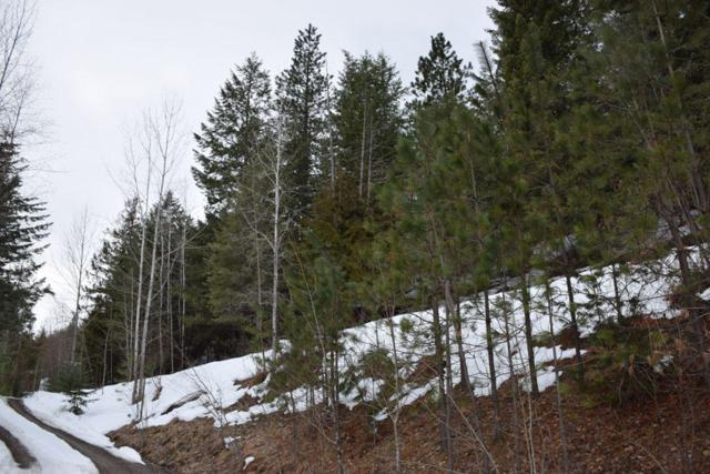 Lot 7 Lower Pack River Rd, Sandpoint, ID 83864 (#18-942) :: Prime Real Estate Group