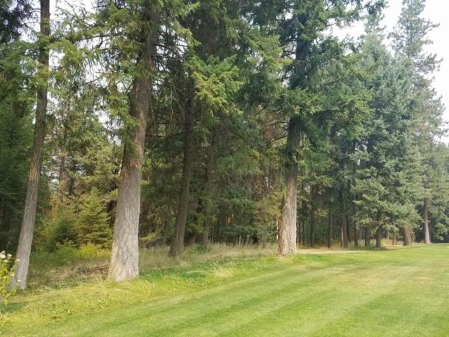 Blk1 Lot9 Hanaford Rd, Blanchard, ID 83804 (#18-9432) :: Northwest Professional Real Estate