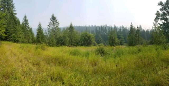 Nna Moyie River Road, Bonners Ferry, ID 83805 (#18-9511) :: Team Brown Realty