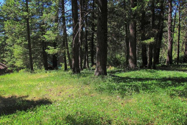 Lot 6 Hanaford Road, Blanchard, ID 83804 (#18-9559) :: HergGroup Coeur D'Alene