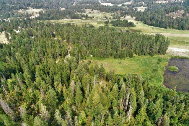 NKA Sunnyside Road (6.65 Acres), Sandpoint, ID 83864 (#18-9572) :: Team Brown Realty