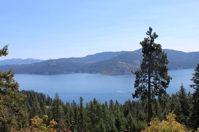 L18 W Platinum Dr, Coeur d'Alene, ID 83814 (#19-10230) :: Coeur d'Alene Area Homes For Sale