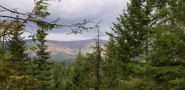 Alder Creek Sub, Tract 46, St. Maries, ID 83861 (#19-10296) :: Keller Williams Realty Coeur d' Alene