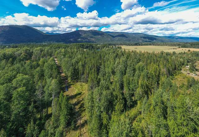 Lot 11 Craigs Forest Tract, Sandpoint, ID 83864 (#19-10337) :: Prime Real Estate Group