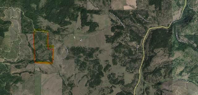 NNA Coon Creek, St. Maries, ID 83861 (#19-10473) :: The Jason Walker Team