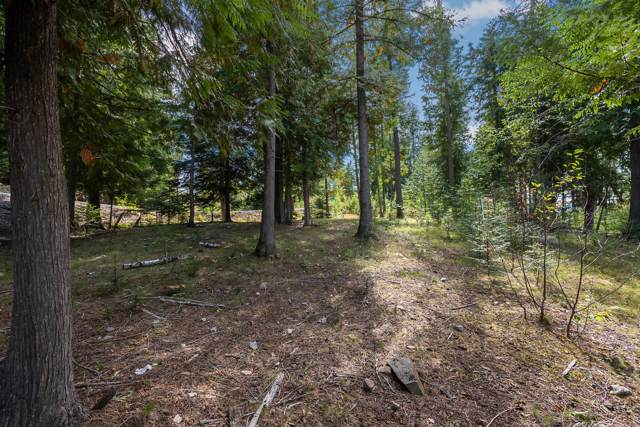 NNA Idaho Club Trappers Loop C19, Sandpoint, ID 83864 (#19-10547) :: Link Properties Group