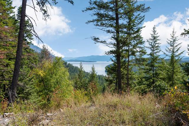 NNA S Idaho Club White Cloud Drive D12, Sandpoint, ID 83864 (#19-10548) :: Link Properties Group