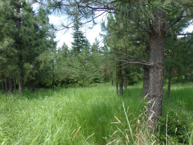 Lot 7 Rimrock Drive, St. Maries, ID 83861 (#19-1082) :: Embrace Realty Group